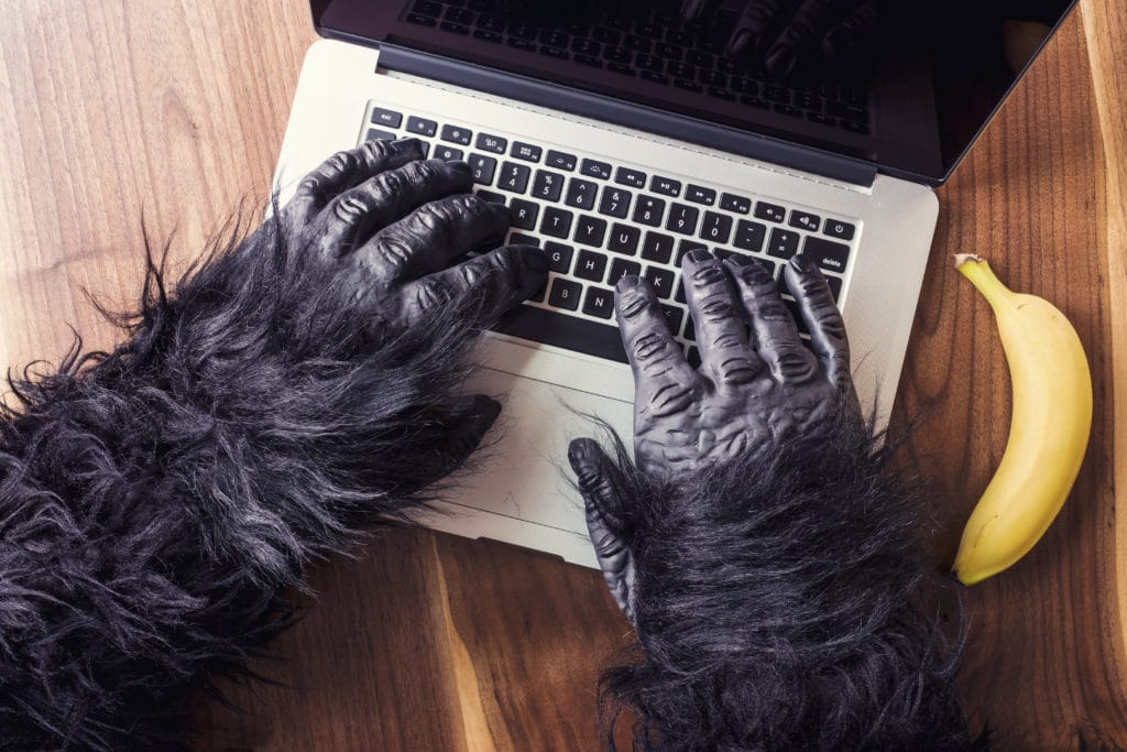 Monkey typing on laptop with banana