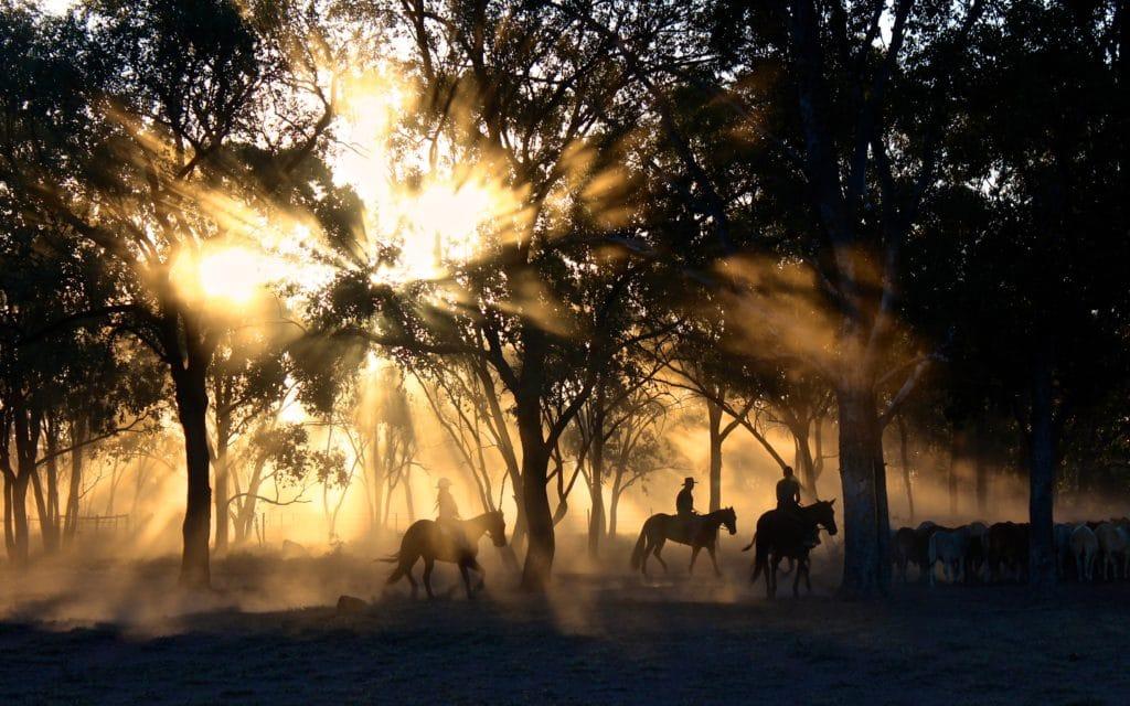 Three Cattle Herders on Horseback