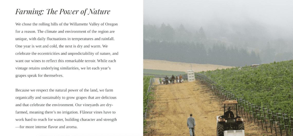 winery copy